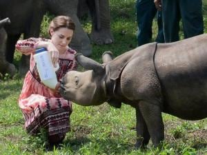Catherine (Kate Middleton), Duchess of Cambridge, feeds a Rhino calf during a visit to the Centre for Wildlife Rehabilitation and Conservation (CWRC) near Kaziranga National Park, Assam.