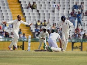 Indian players celebrate after dismissing South Africa's Hashim Amla