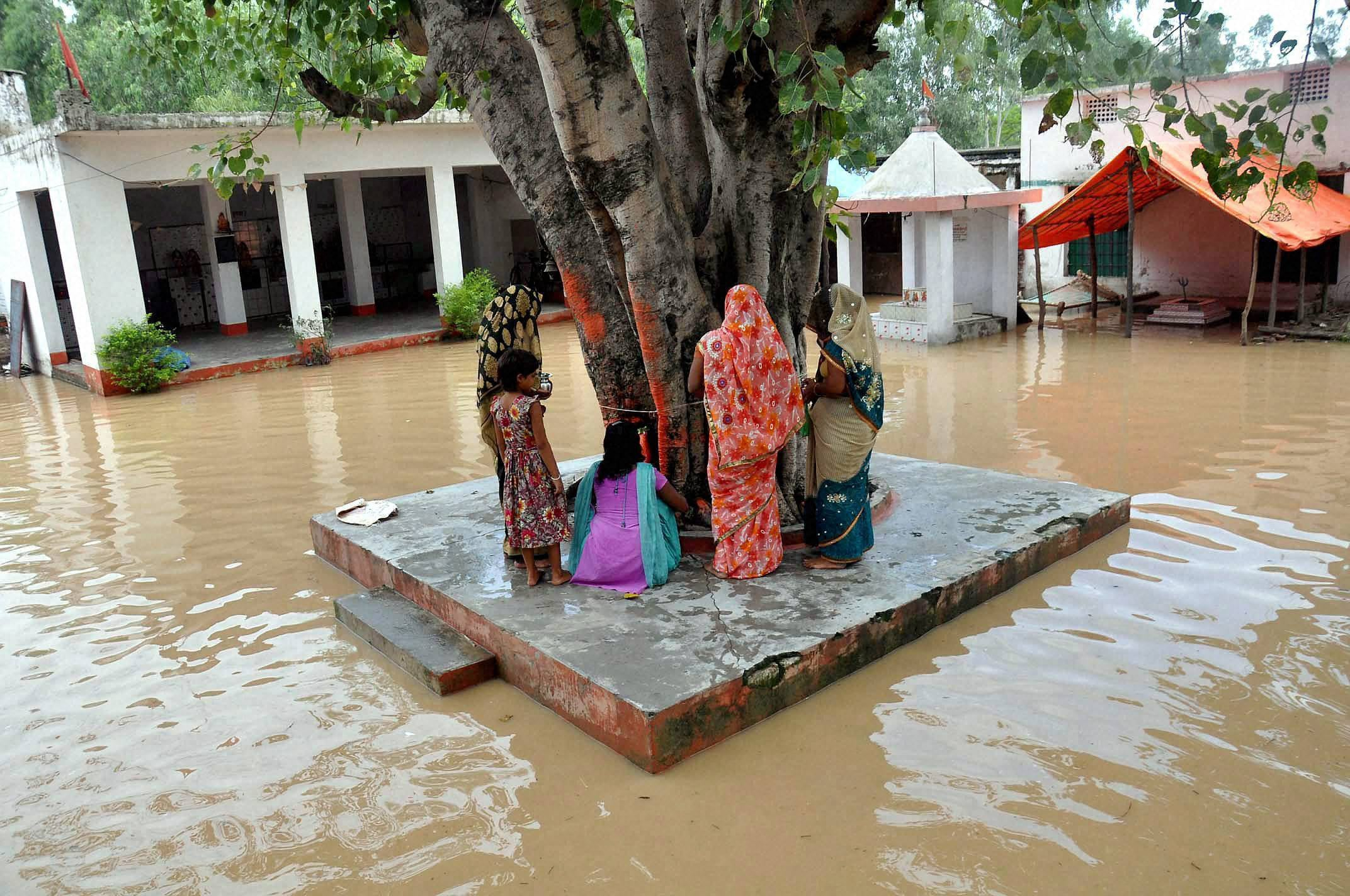 Women, perform worship, Peepal tree, locality, flooded, Ramganga River, Moradabad district