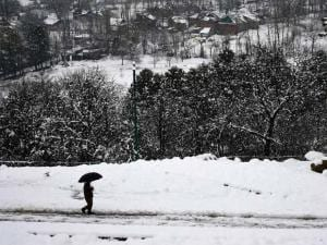 A man walks with umbrella during fresh snowfall at Tangmarg in Baramulla District of North Kashmir