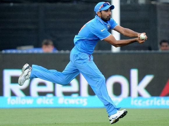 World Cup, India vs Ireland, Mohammed Shami, Team India, Australia, Cricket fan