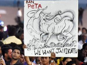 Jallikattu: Tamil Nadu reels under protests; CM knocks PM's door