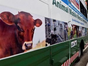 Animal Mobile Medical Ambulances