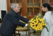 Mamta Banerjee meets President Pranab Mukherjee