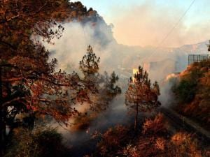 Smoke rises from forest fire at Heritage Kalka Shimla Railway track near taradevi, in Shimla