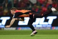 Sunrisers Hyderabad  David Warner  takes a catch of  Royal Challengers Bangalore Mandeep Singh