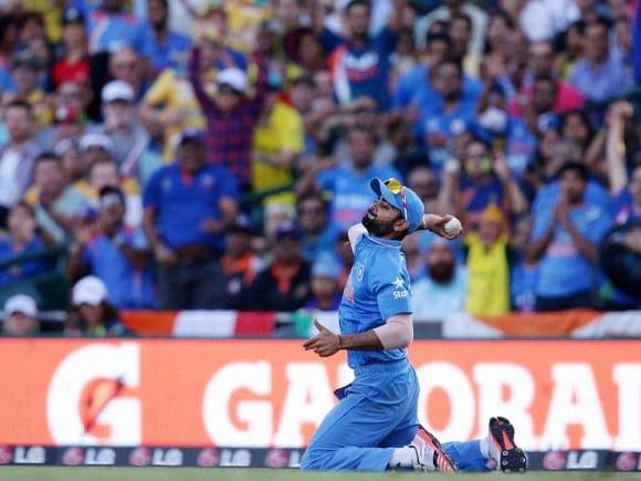 Virat Kohli, World Cup,  India,  Australia, Team India, SCG, Cricket fan