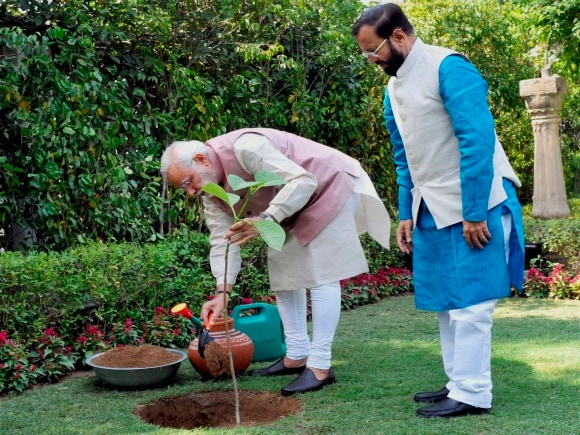 World Environment Day, Prime Minister of India, Narendra Modi, Minister of State for Environment, Prakash Javadekar, Environment, New Delhi