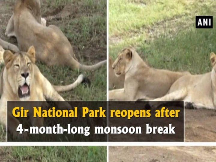 Gir National Park reopens after 4-month-long monsoon break