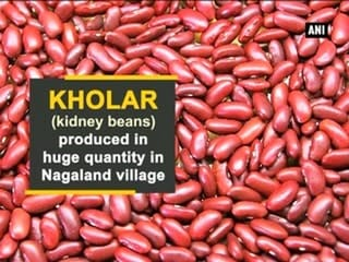 Kholar (kidney beans) produced in huge quantity in Nagaland village