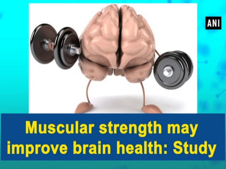 Muscular strength may improve brain health: Study