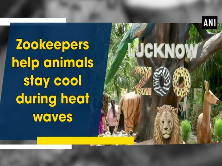 Zookeepers help animals stay cool during heat waves