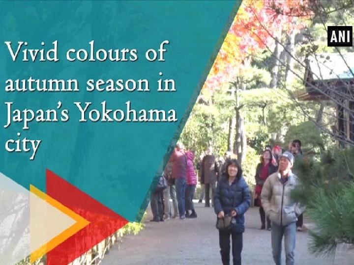 Vivid colors of autumn season in Japan's Yokohama city