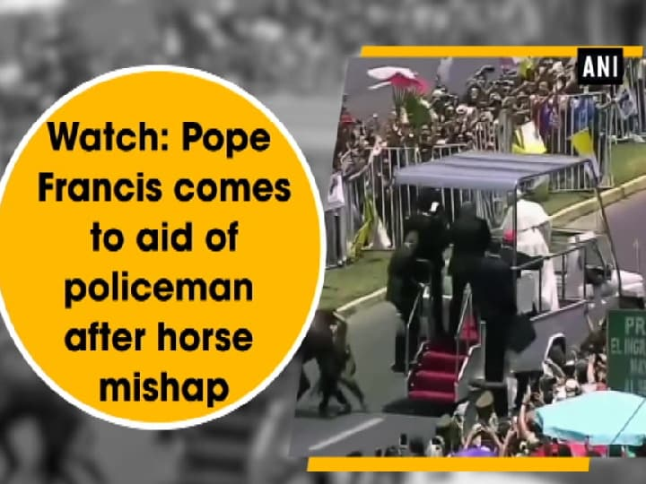 Watch: Pope Francis comes to aid of policeman after horse mishap