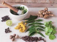 Commercial success eludes Lucknow herbal innovation lab