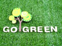 Going green a solution for environmental problems