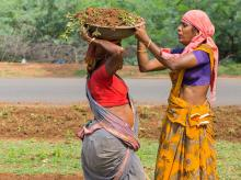 A group of women employed in the NREGA scheme clean the side of the road. (Photo: Shutterstock)
