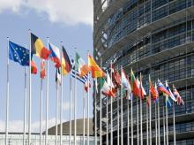 (Flags of the countries of the European Union at an input in Europarliament) Image via Shutterstock