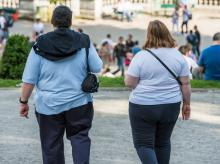 If not tackled, overweight and obesity can persist into adulthood. Photo: Shutterstock