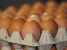 Egg prices up 25% in a month, while that of chicken declines