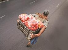 Tomatoes: The new enemy in fight against inflation