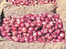 Onion prices hit two-year highs on reduced supply