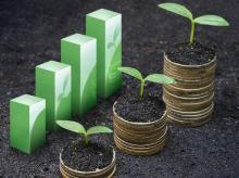 bonds, investment, mutual funds, growth, money, dividends