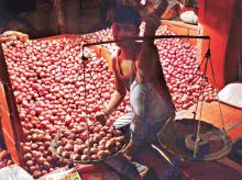 India importing onion, despite  export rising 56% in April-July