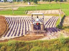 Narendra Modi, Narendra Modi government, Minimum Support Price, MSP, kharif crop prices, Madan Sabnavis