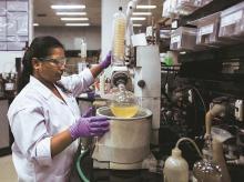 Drug firms, Lupin, Cadila Healthcare