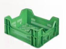 Chandni Textiles to triple production of plastic moulded crates