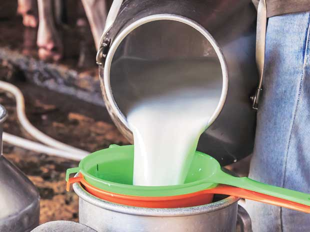 Russia may ease norms for Indian dairy imports