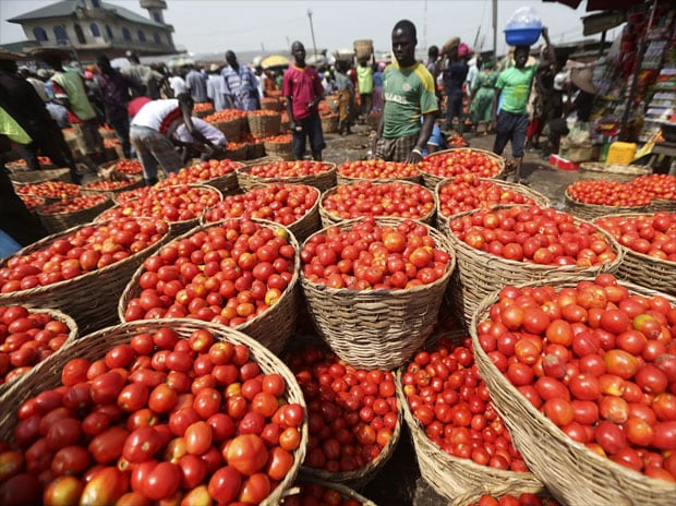 Tomato prices soar to 60-70 per kg due to crop damage in producing states