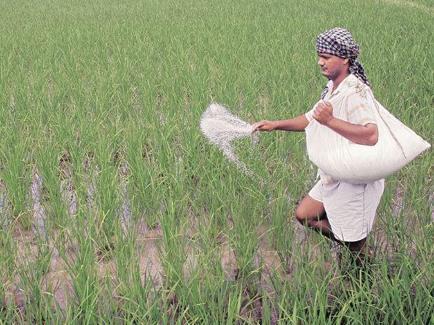 fertiliser business, fertilisers, fertiliser biz