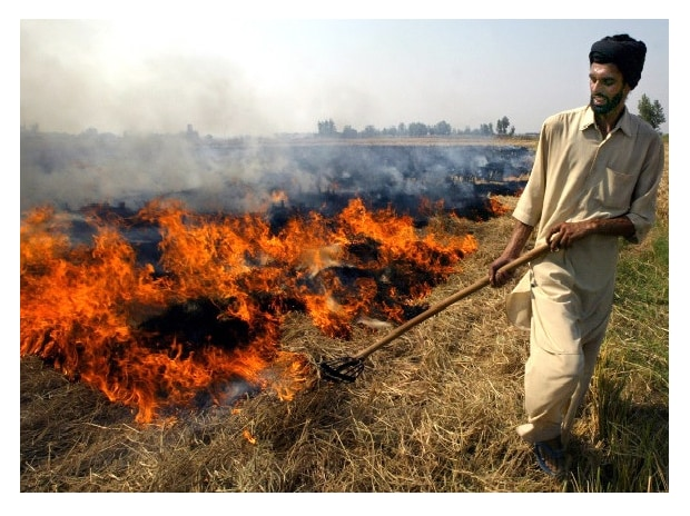 Farmers resort to stubble burning in protest against prohibition orders