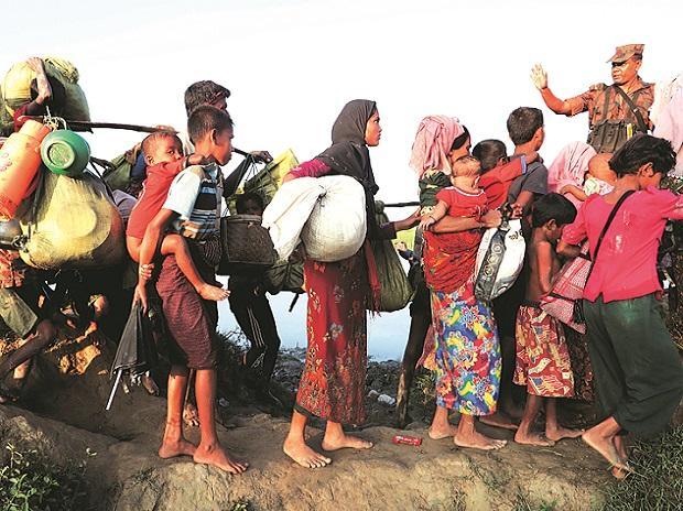 Rohingyas, Rohingya