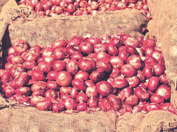 India stares at drop in onion output in 2017-18