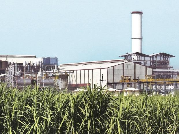 Sweet year ahead: Sugar sector outlook turns positive for