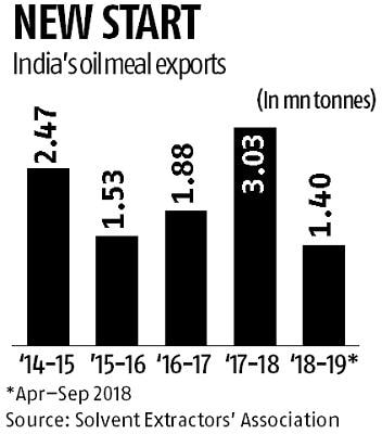 Amid trade war with US, China may soon open its market for Indian oilmeals