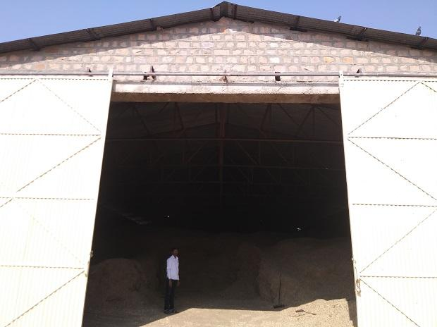 gaushala, cow shelters, cow shelter in Rajasthan, cows