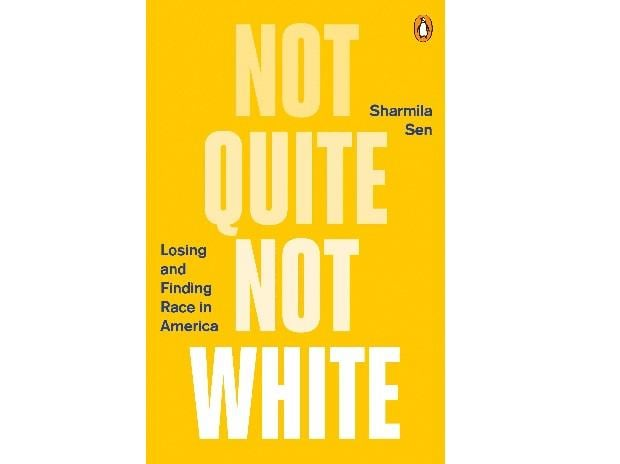 Not Quite Not White book