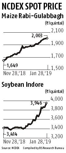 High feed prices to affect profit margins of poultry farms