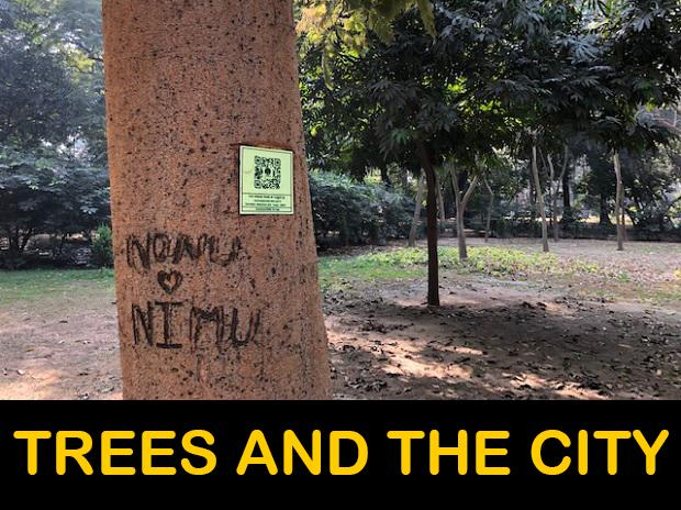 Info About Lodi Gardens Trees On Qr Codes A Great Step But Is It