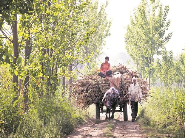 Farmers, village, farming