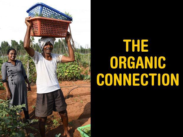 farming, organic farming