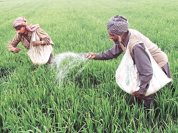 Most non-urea fertiliser subsidies unchanged; Rs 22875 to be spent on sops