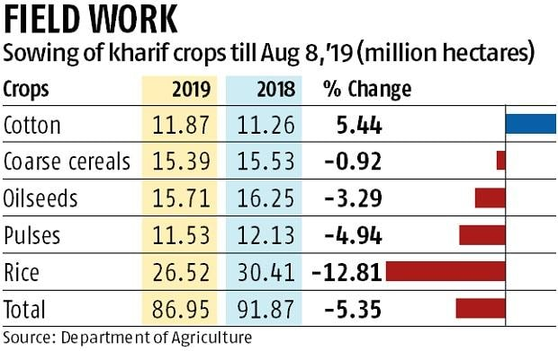 Kharif sowing to be normal, says govt; monsoon level 1% below average