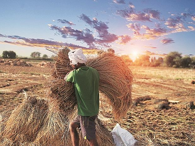 Rural India- Farm and rural sectors allocated Rs 2.83 trn and  agriculture credit target for next year is set at Rs 15 trn