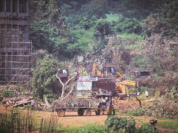 A tractor carries away the felled trees for building a Metro car parking shed at Aarey Colony in Mumbai on Monday. Photo: PTI