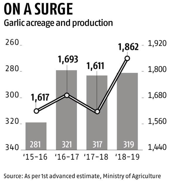 Garlic prices surge sharply as rain hits supply; onion bounces back